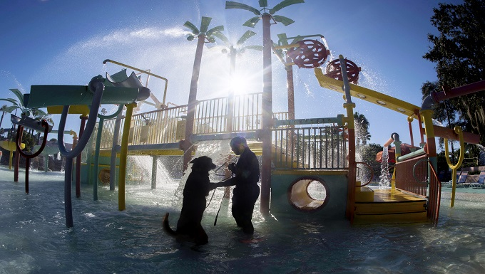 U.S. Air Force Senior Airman Damion Morris, a military dog handler assigned to the 6th Security Forces Squadron, tests the water with his military working dog, Lleonard, at Adventure Island, Tampa, Fla. Oct. 29, 2018. Handlers performed bite drills designed to slow down or stop suspects attempting to escape into a body of water. (U.S. Air Force photo by Airman 1st Class Scott Warner)